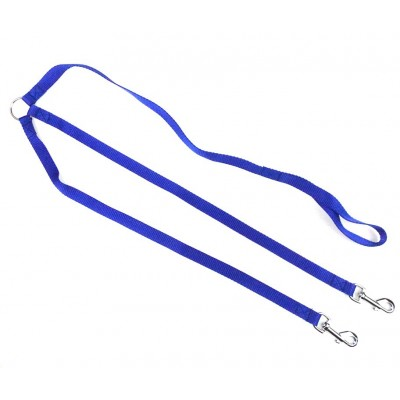 laisse nylon bleu